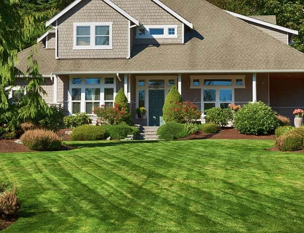 house and lawn care