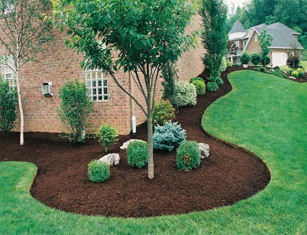 mulch and tree bedding